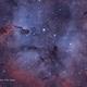 IC1396,                                Timgilliland