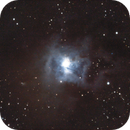 NGC7023,                                Jeff Signorelli