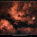 Gamma Cygni Nebula (IC 1318),                                Mike Oates