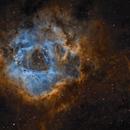 Rosett Nebula HaSHO,                                Rodd Dryfoos