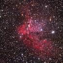A broadband view of the Wizard Nebula,                                Giorgio