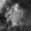 IC 5070: Pelican Nebula,                                Yizhou Zhang