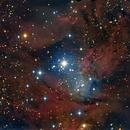 Fox Fur Nebula - NGC 2264,                                GALASSIA 60
