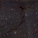 B150 Seahorse nebula (Caballito de mar),                                Fernando Huet