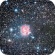 Cocoon Nebula IC 5146,                                Michi Scheidegger