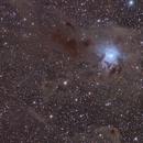 NGC7023,                                Vincent