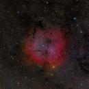 IC 1396,                                Craig Prost