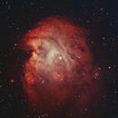 NGC 2174, the Monkey Head nebula (BiColor),                                Steve Coates