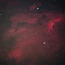 Pelican Nebula,                                Nam Nguyen