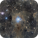 NGC 7023 - The Iris Nebula,                                Arun H.