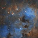 IC410 Tadpoles in Hubble palette,                                avarakin