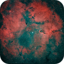IC 1396 Overview,                                Georg N. Nyman