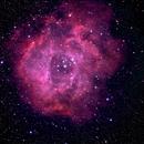 Rosette Nebula,                                Boommutt