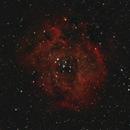 Rosette Nebula,                                Mark Germani