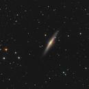 NGC 2683,                                Martin Armbrecht