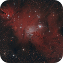 NGC2264 - Cone nebula,                                mirco caffelli