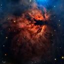 NGC 2024 LaFlamme,                                TEAM_NEWASTRO