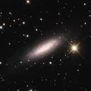 NGC 6503,                                Bill McLaughlin
