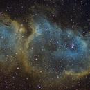 IC1848 - Soul Nebula,                                Tom