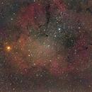 IC 1396,                                BramMeijer