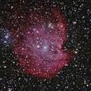 NGC 2174 - Monkey Head Nebula v3,                                Ron