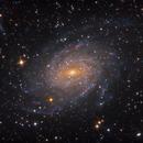 NGC 6744,                                Lee Borsboom