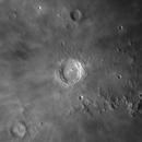 Luna,                                Miquel