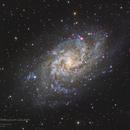 M33 Triangulum Galaxy,                                Graem Lourens