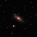 NGC 2841, An Unbarred Spiral Galaxy,                                Steven Hanaway