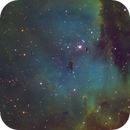 NGC 281 (Pacman in Hubble Palette),                                Bert Scheuneman