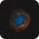 Abell 31 - SH2-290 - PK 219.1+31.2 (Bicolor RGB),                                Frank Breslawski
