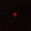IC 5146 Cocoon Nebula,                                Gianni Carcano