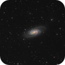 NGC 2903 from Spain and France,                                Steve Milne
