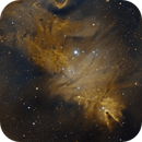 The Cone and Foxfur Nebula,                                Arun H.