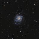 Pinwheel Galaxy - M101,                                Justin Radomski