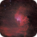 IC405 Flaming Star HA_RGB,                                Joe Alexander