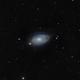 M63 - Sunflower Galaxy,                                Doug MacDonald