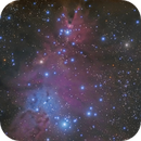 NGC 2264 - Cone Nebula and Christmas Tree Cluster,                                Michel Lakos M.