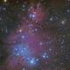 NGC 2264 - Cone Nebula and Christmas Tree Cluster,                                Michel Lakos M.
