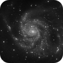 M101 - in your face,                                Tom Gray