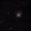 Galaxie du Moulinet M101 également appelée NGC 5457,                                Fayçal