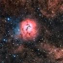 Messier 20 en HOO,                                Georges