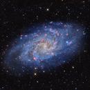 Triangulum Galaxy (M33),                                Johnny Qiu