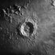 Copernicus,                                Brian Ritchie