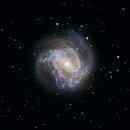 M83 (ZWO ASI2600MC First Light),                                Peter Pat
