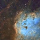 Tadpole Nebula,                                Sinan Arkin