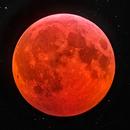 2019 Total Lunar Eclipse,                                Shannon Calvert