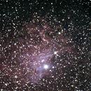 Flaming Star Nebula,                                Carsten Krege