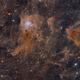 Iris and lots of space dust,                                Dennis Sprinkle