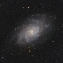 M33 from the South,                                Ignacio Diaz Bobillo